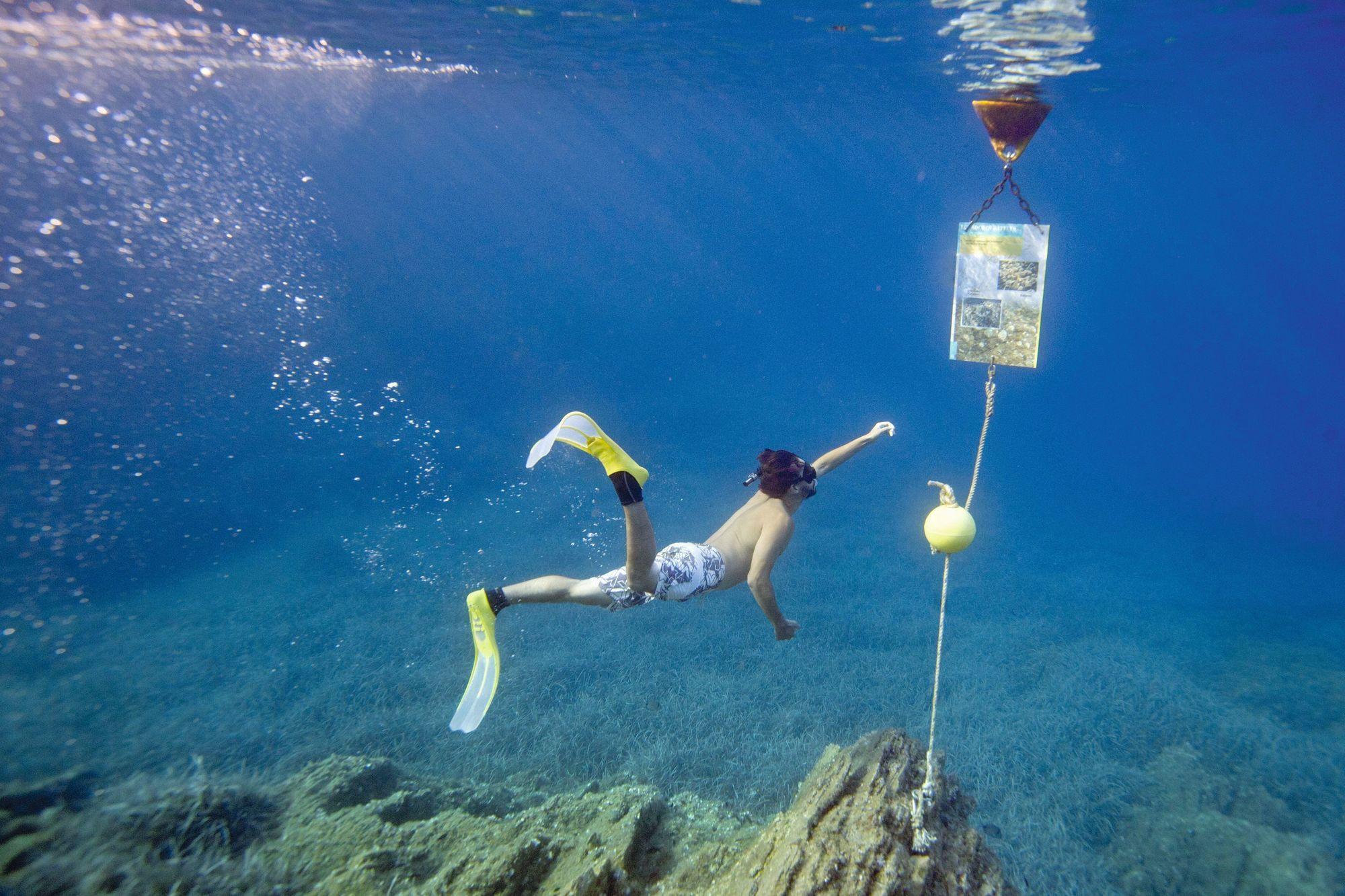 Le sentier sous-marin de Port-Cros