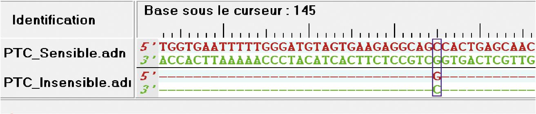 Comparaison d'extraits de séquences d'ADN