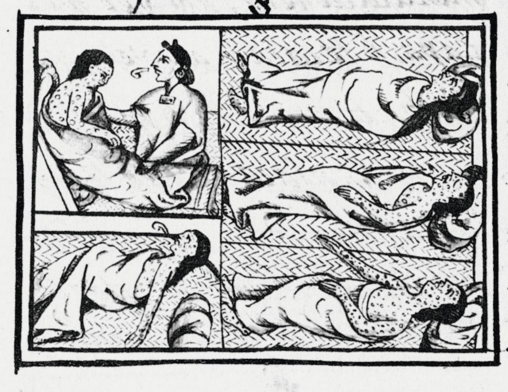 Codex de Florence, troisième quart du XVIe siècle, dessin, bibliothèque Laurientiana, Florence