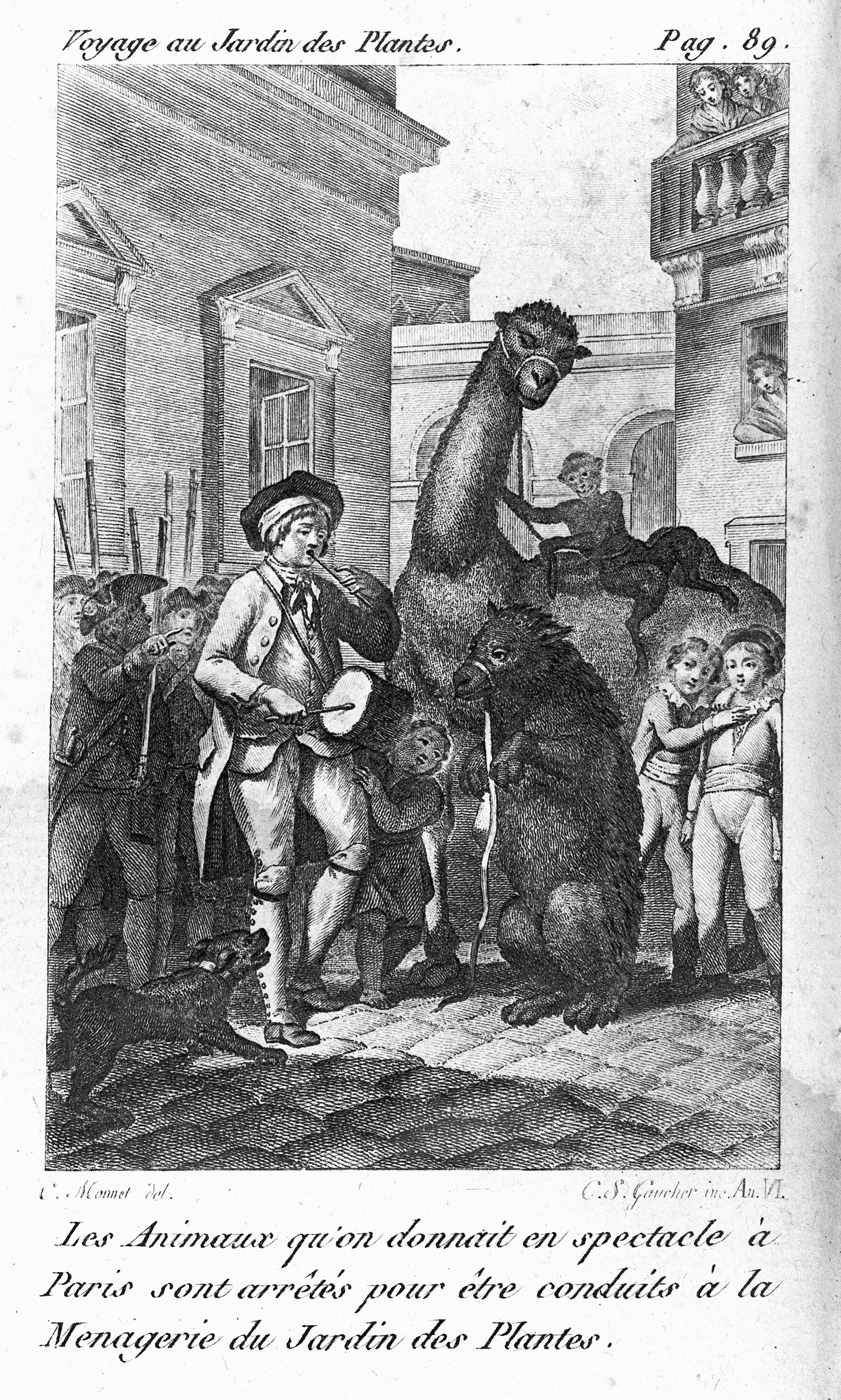 L'arrivée d'animaux dans la ménagerie, gravure