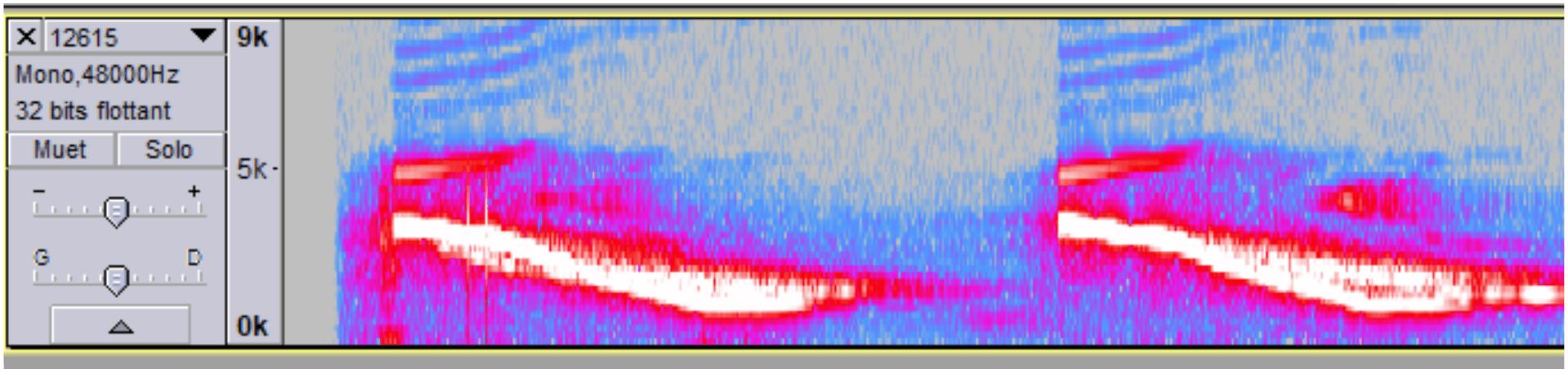Audacity : variations de fréquence du son