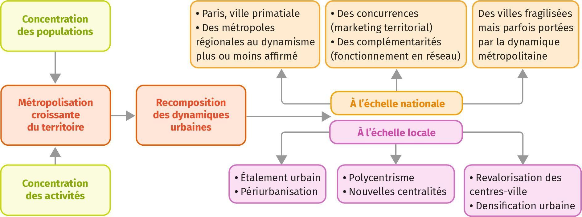 schéma de synthèse