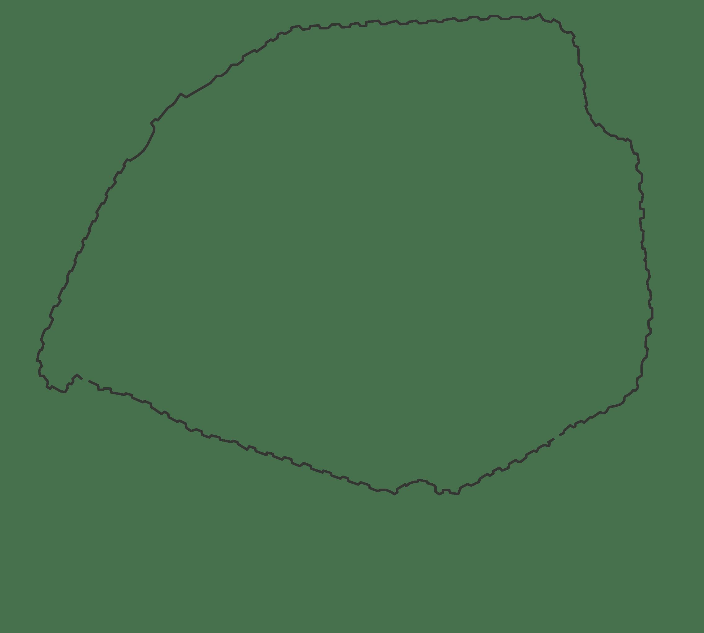 Enceinte fortifiée de Thiers
