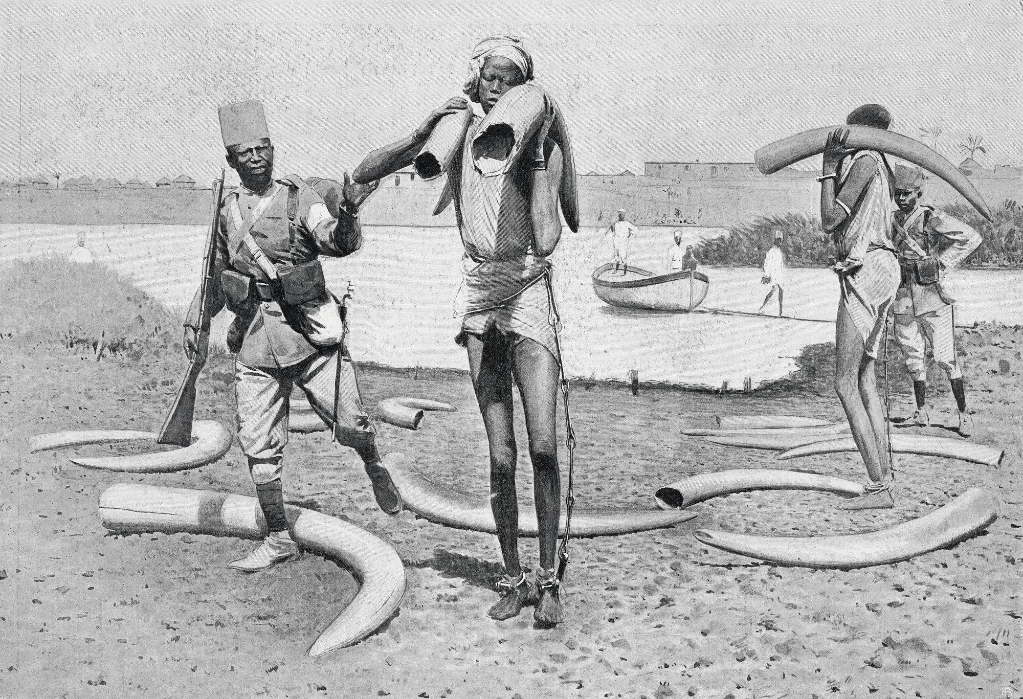 « Prisonniers transportant des défenses d'éléphant », L'Illustration, n° 3153, 1er août 1903.