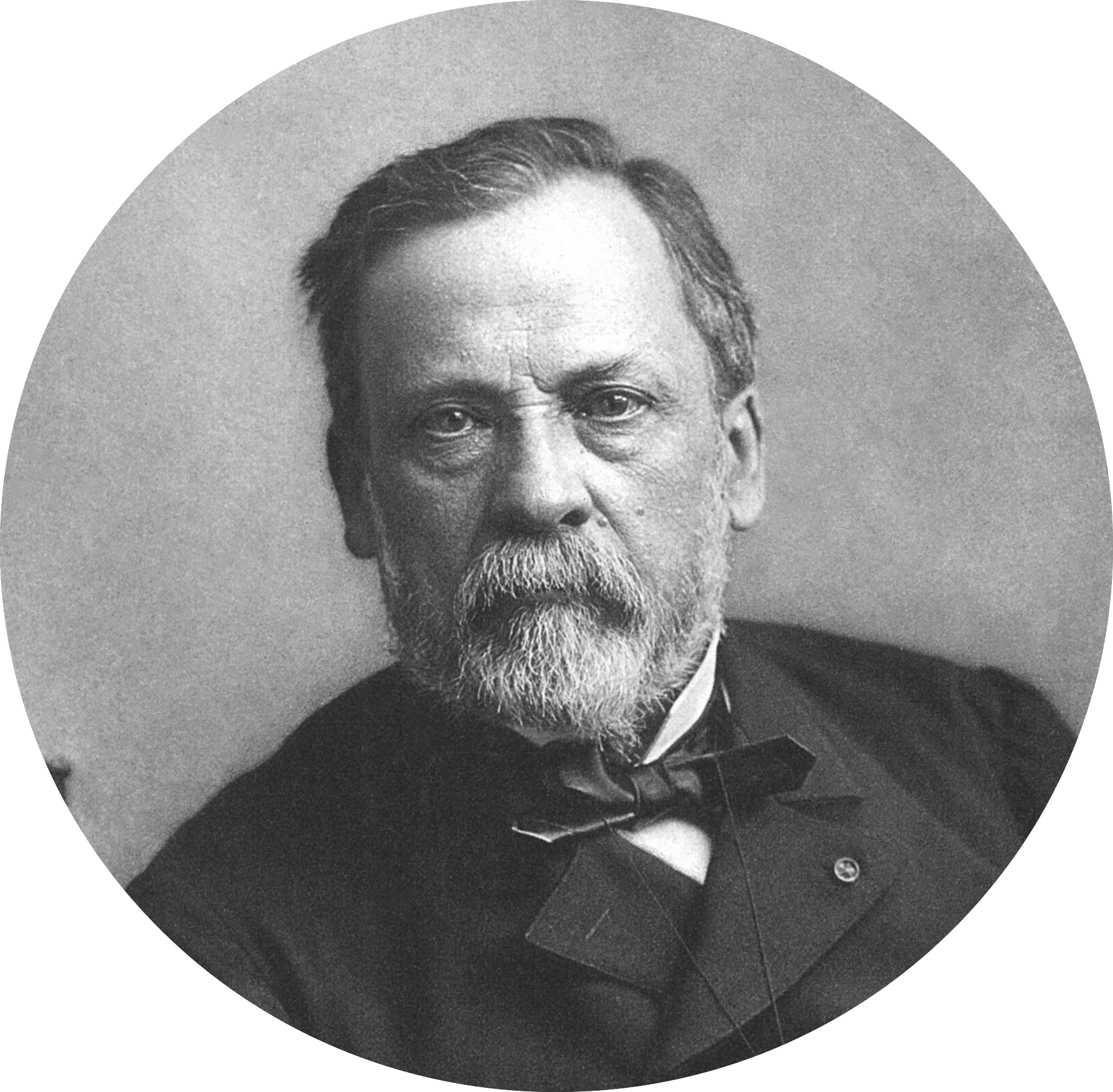 photo portrait de Pasteur