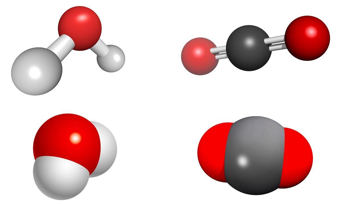 La molécule d'eau et la molécule de dioxyde de carbone