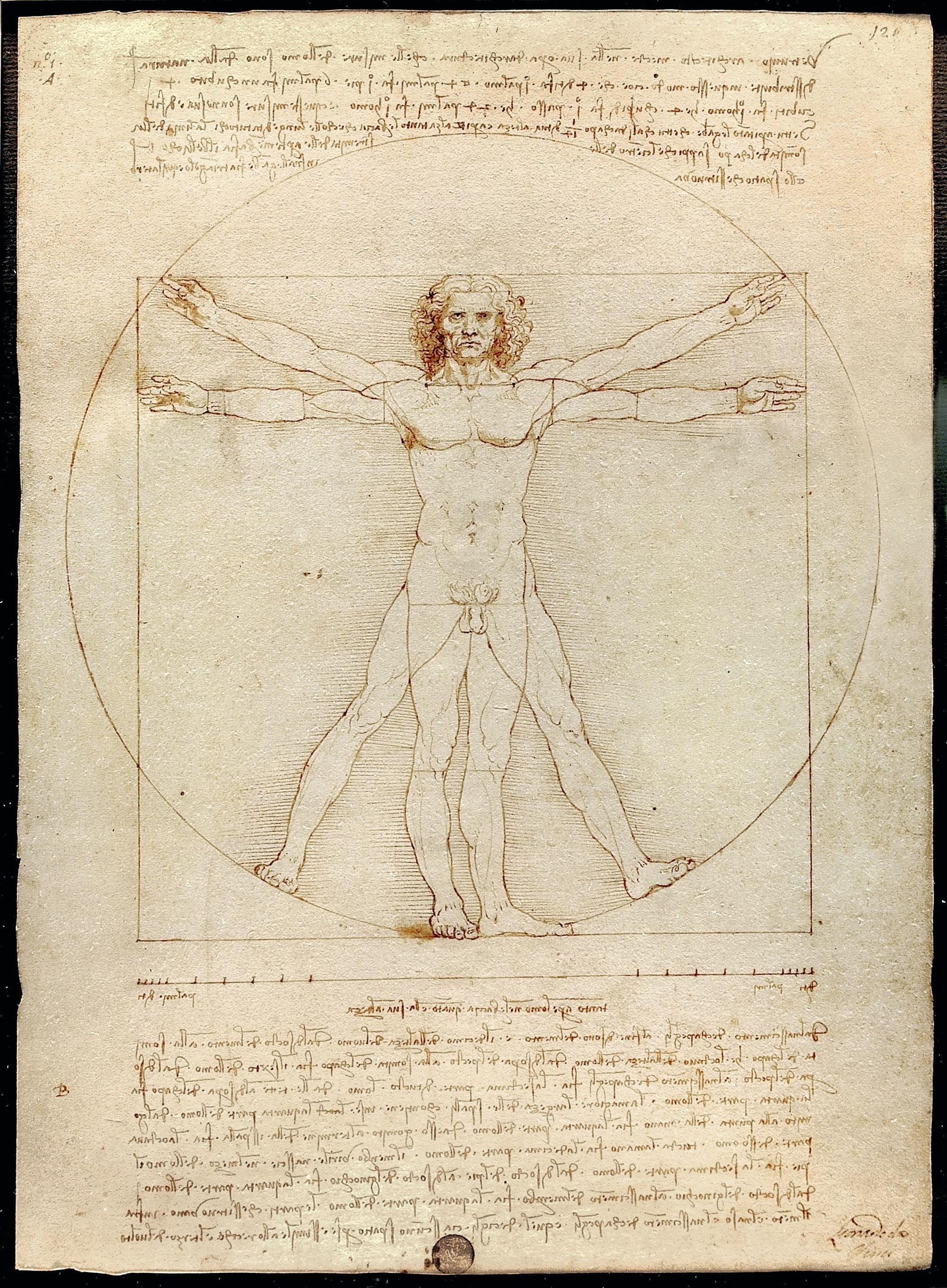 L'Homme de Vitruve par Léonard de Vinci (1490)