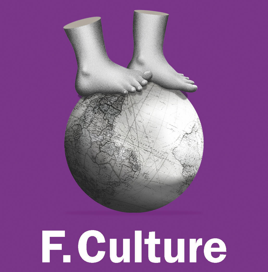 France Culture, Les Pieds sur Terre, « L'Ascenseur social »