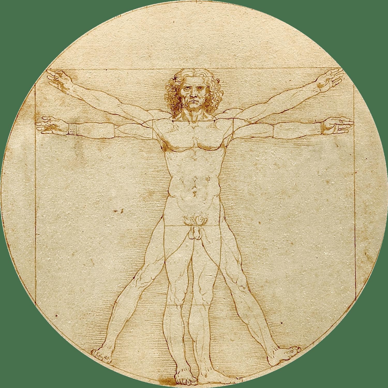 Histoire des maths - L'Homme de Vitruve