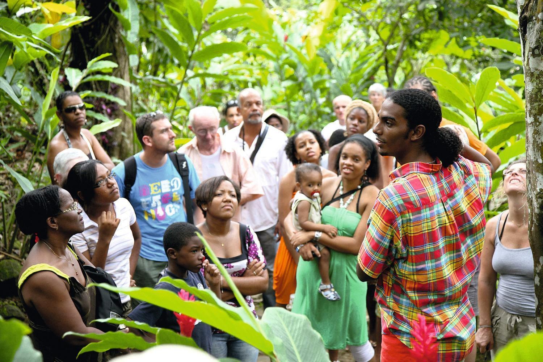 Des touristes visitant une maison du café en Guadeloupe
