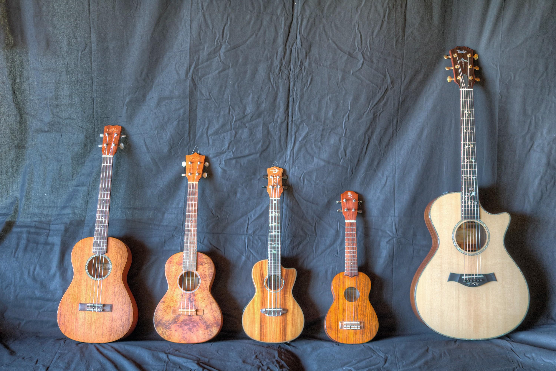 Quatre ukulélés placés à côté d'une guitare classique