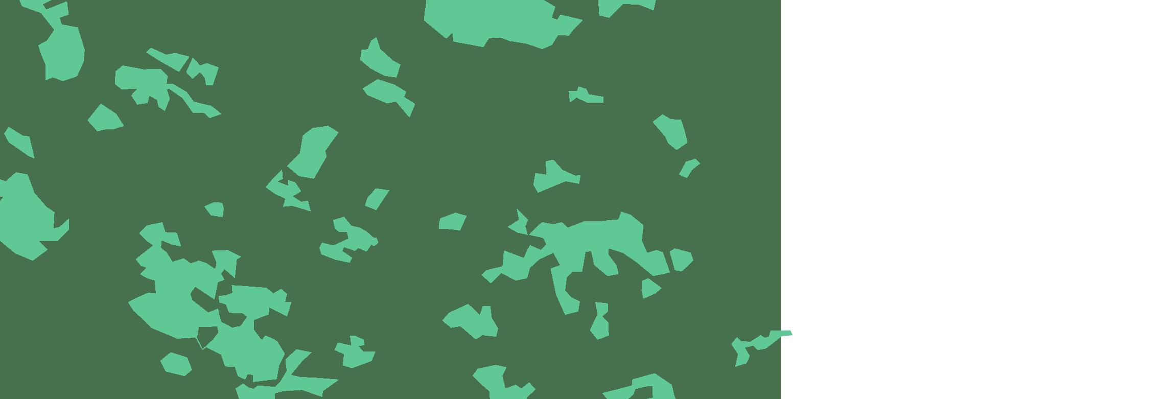 forêt 2018