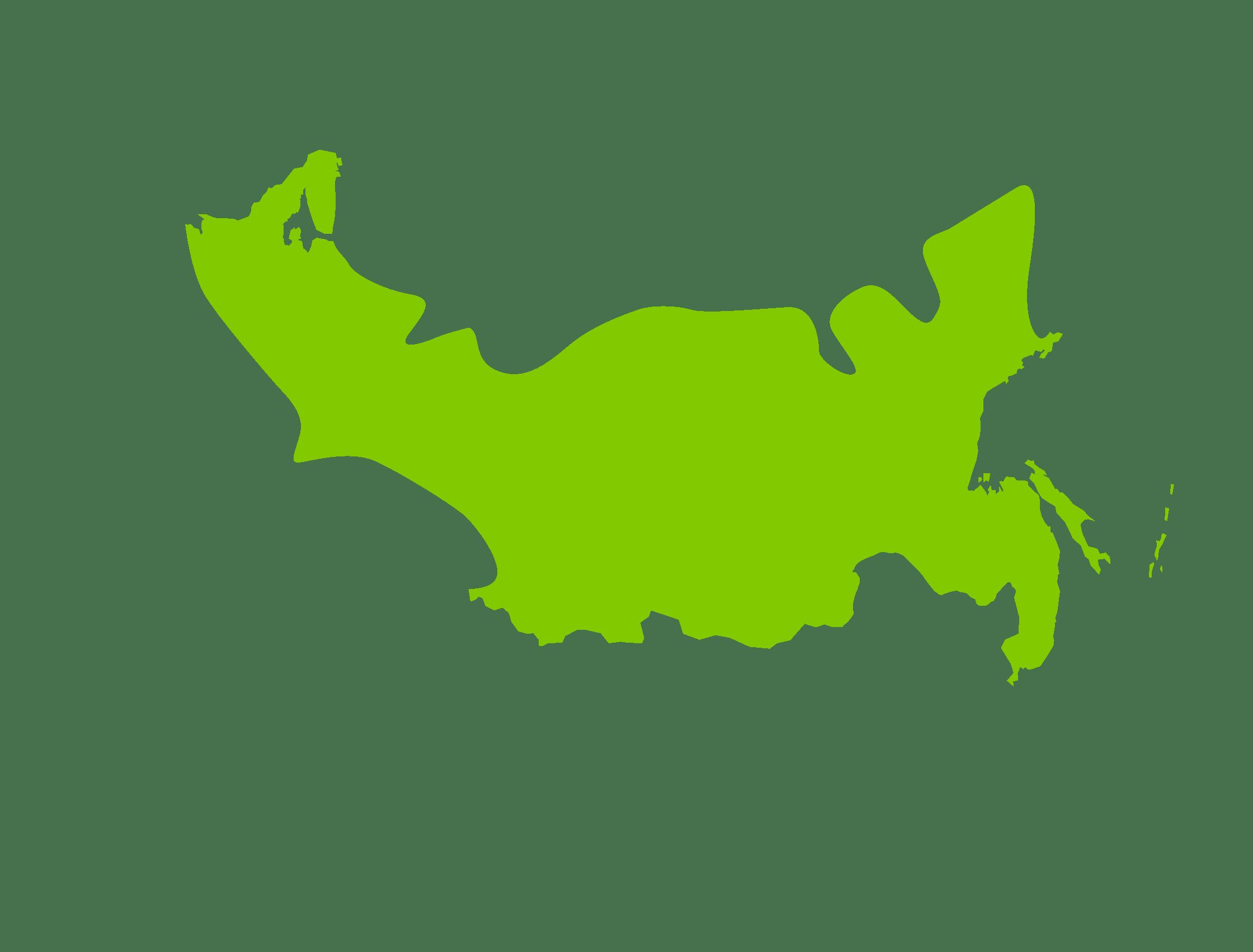 Taïga, forêts de conifères