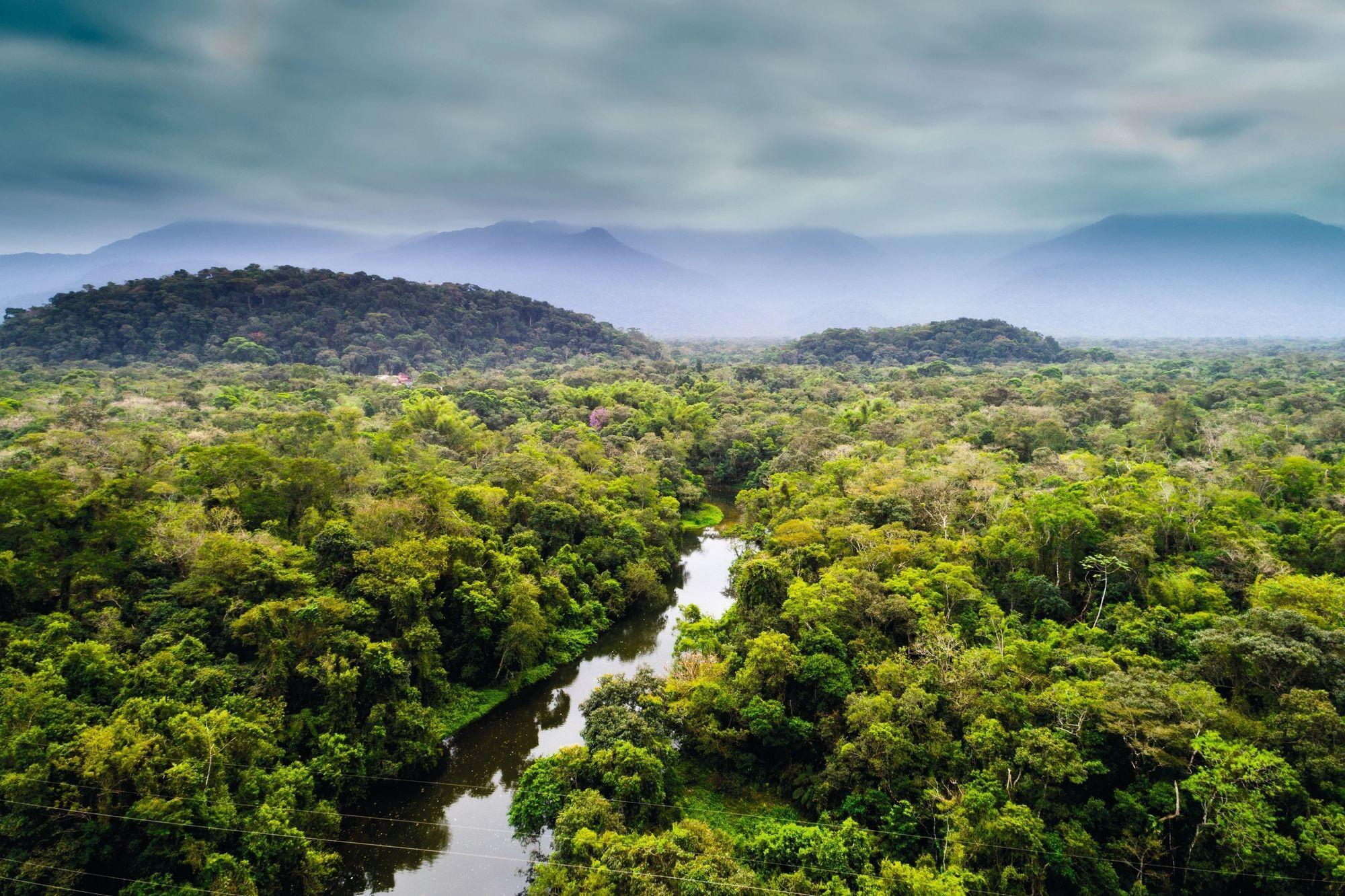 Le parc amazonien de Guyane, un Parc national