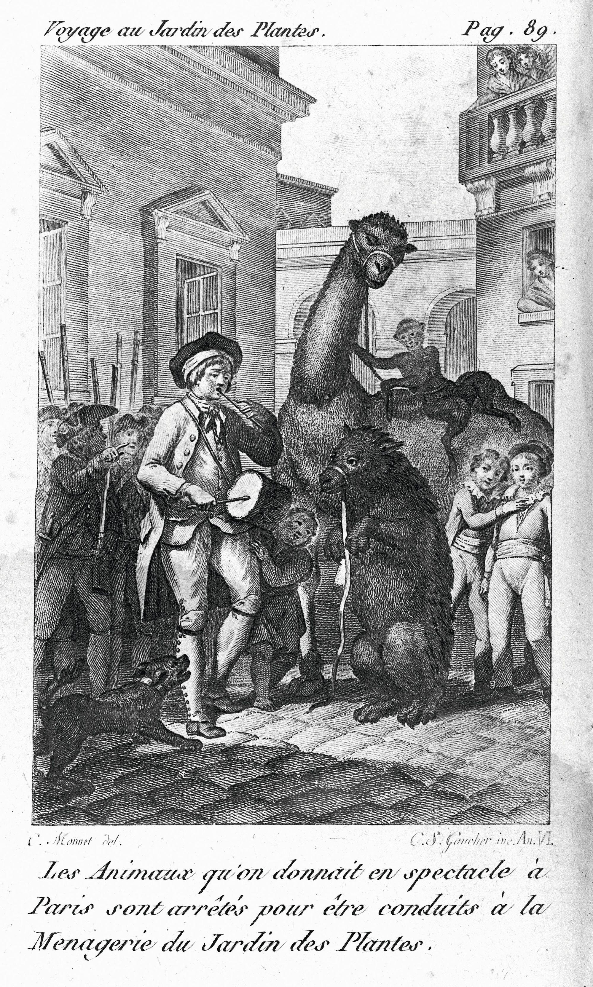 Gravure extraite du Voyage au jardin des Plantes, de Louis‑François Jauffret, 1798, BnF, Paris.
