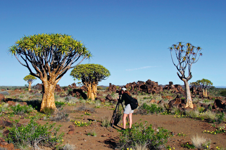 Le désert du Namib, un espace aride et fragilisé