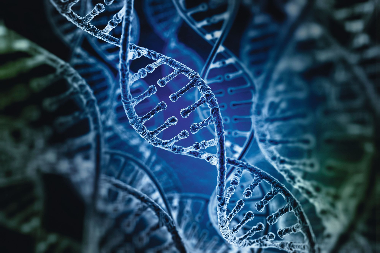 Probabilités et échantillonnage - ADN
