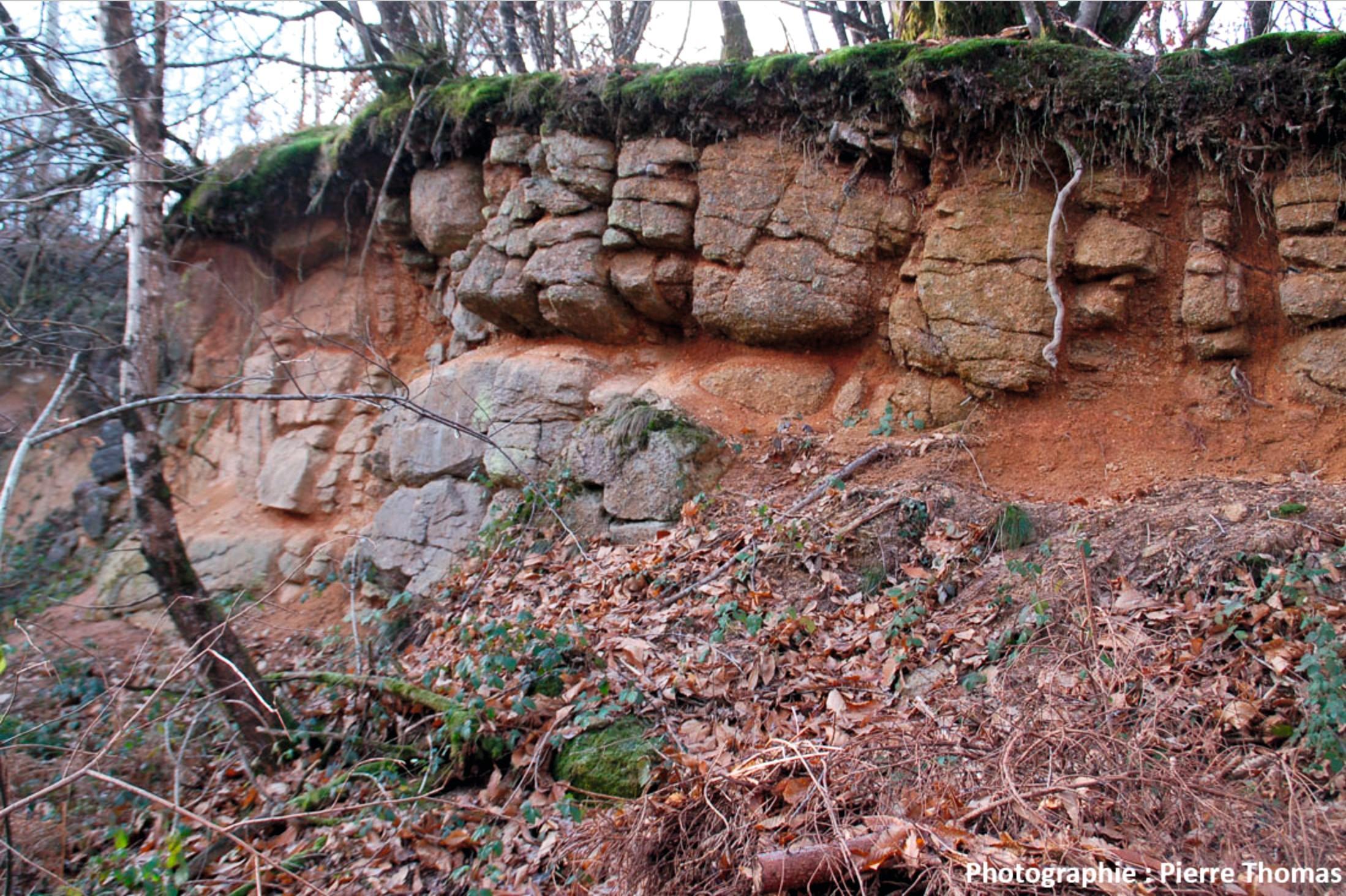L'altération biologique de la roche mère (ici un granite).