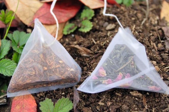 Photo de tea bag index