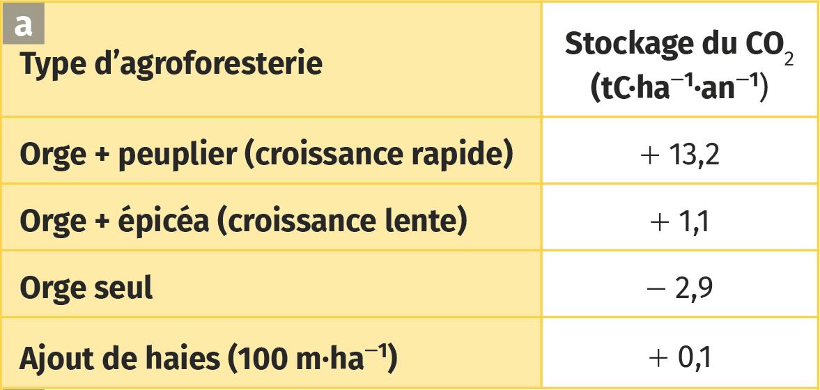 Deux paramètres modifiées en agroforesterie.