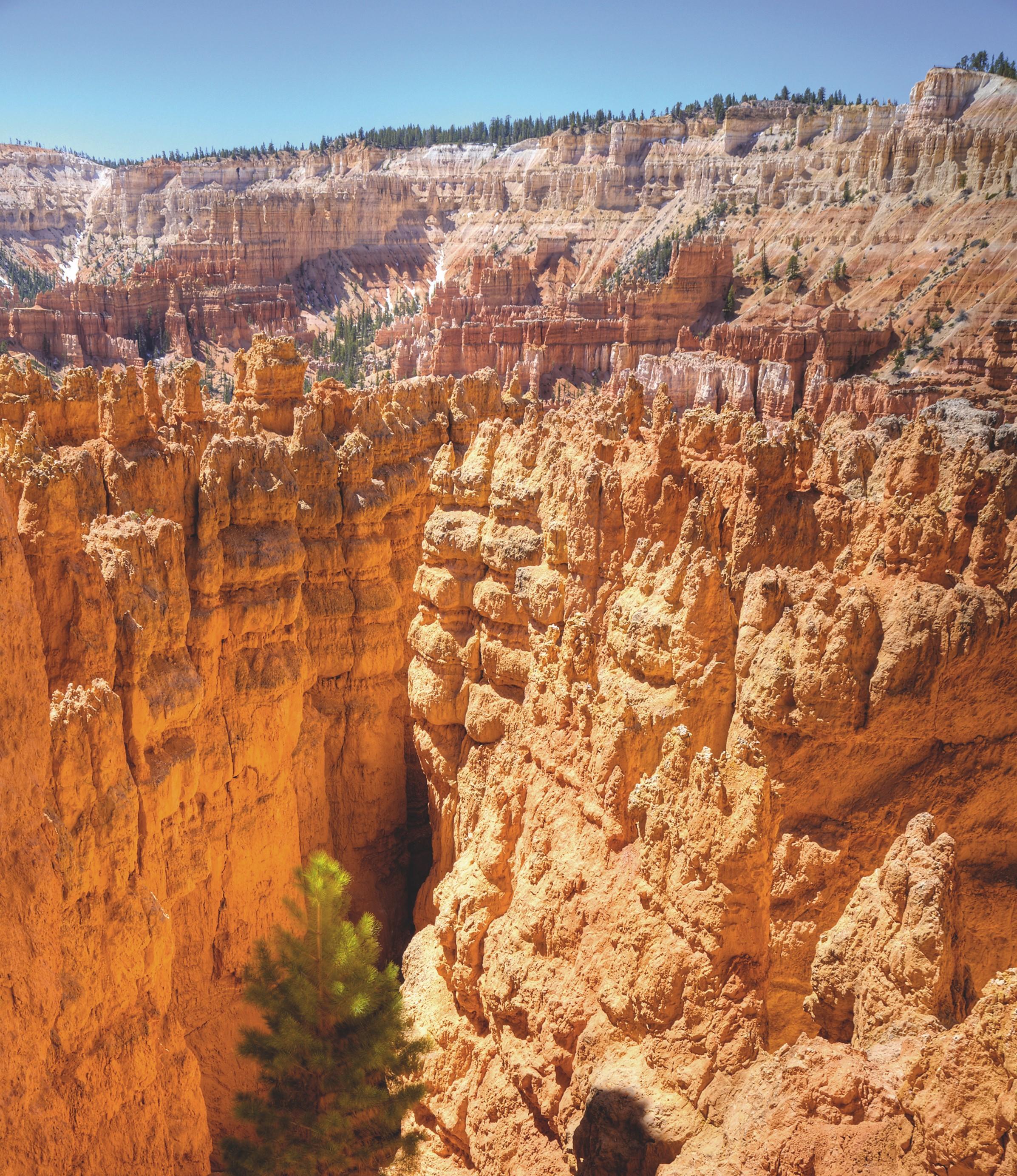 Le parc naturel du Bryce Canyon, Utah, États-Unis.