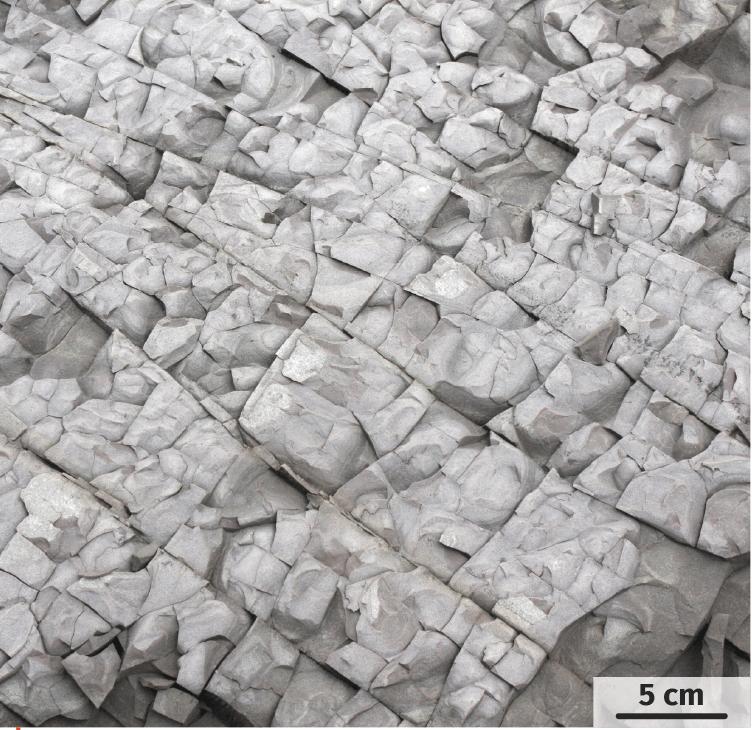 Un calcaire fracturé.