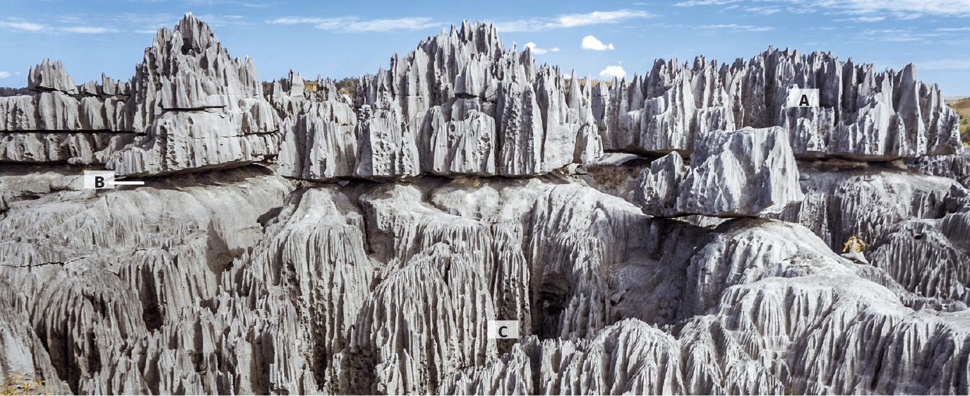 Le lapiaz des Tsingy de Bemaraha à Madagascar.