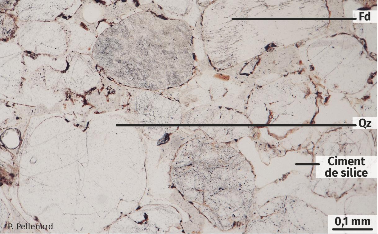 Lame mince d'un grès observée au microscope polarisant (LPNA, lumière polarisée non analysée).