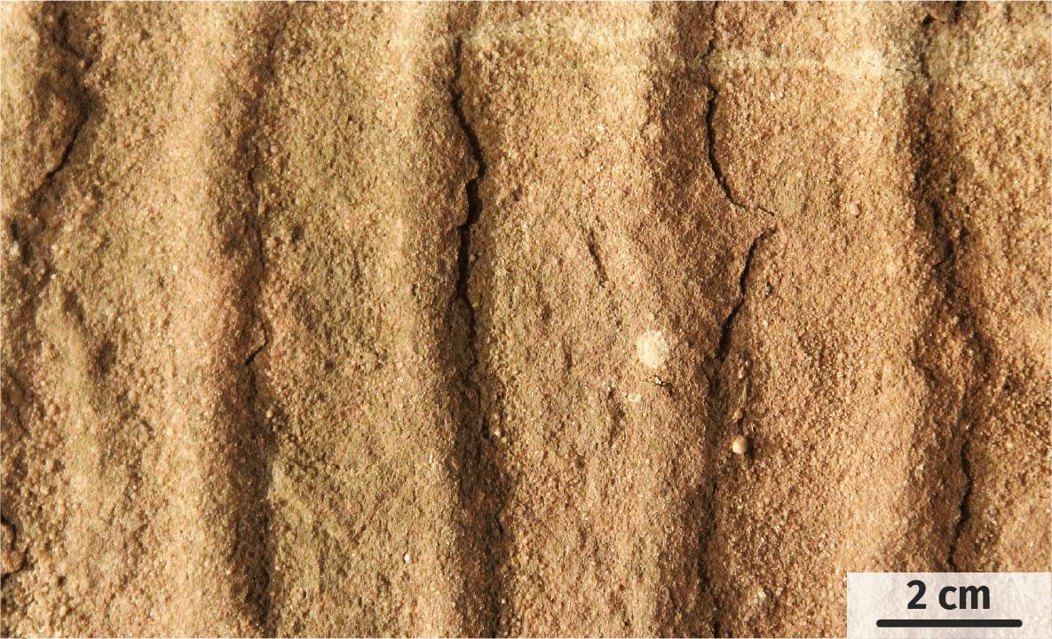 Structures visibles dans les grès vosgiens à l'affleurement.