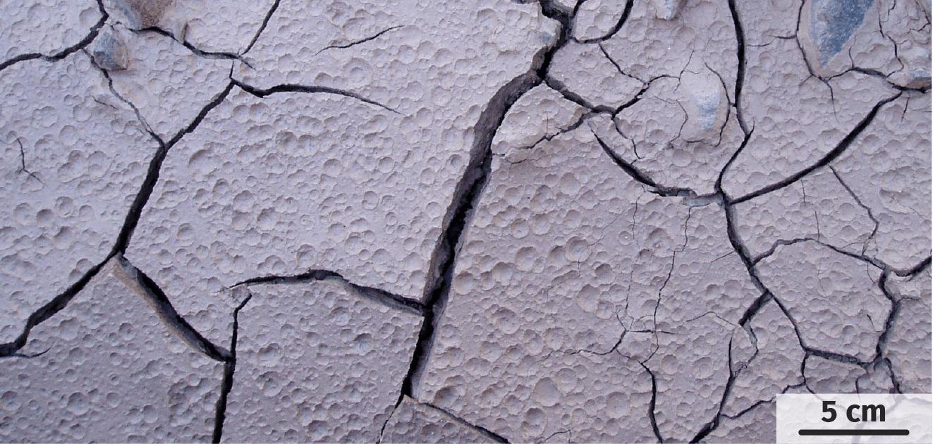 Traces actuelles de gouttes de pluie dans l'argile.