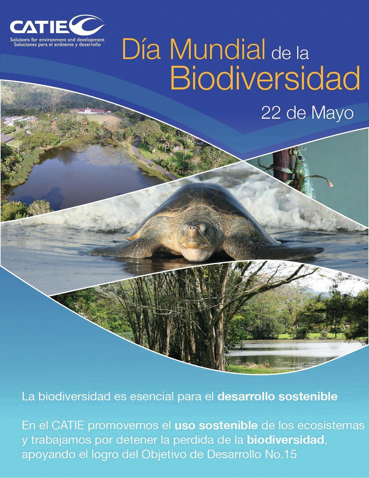Día Mundial de la Biodiversidad, 2012.
