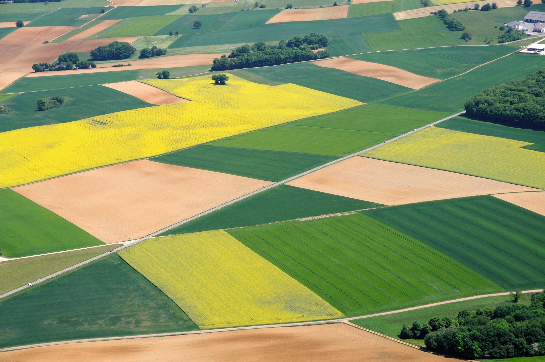 photo de champs agricoles, ouverture de thème