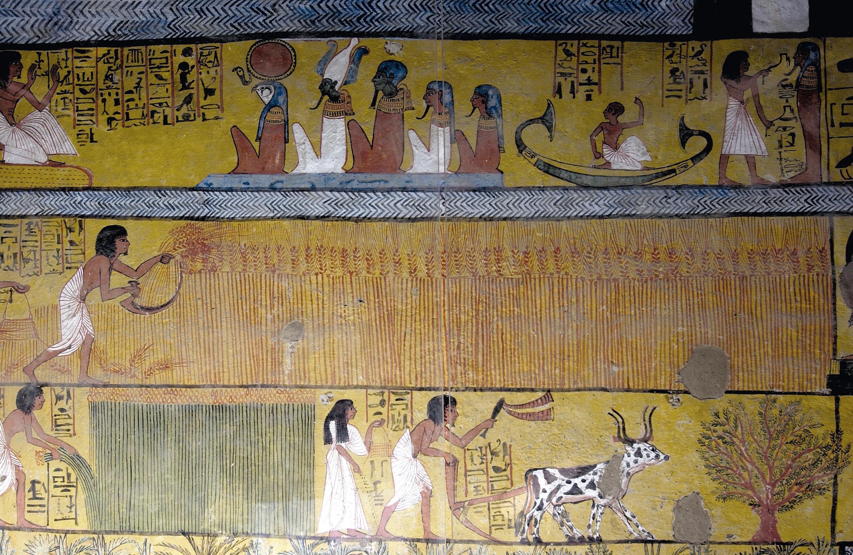 Peinture murale du tombeau de Sennedjem (Égypte) montrant le travail des champs