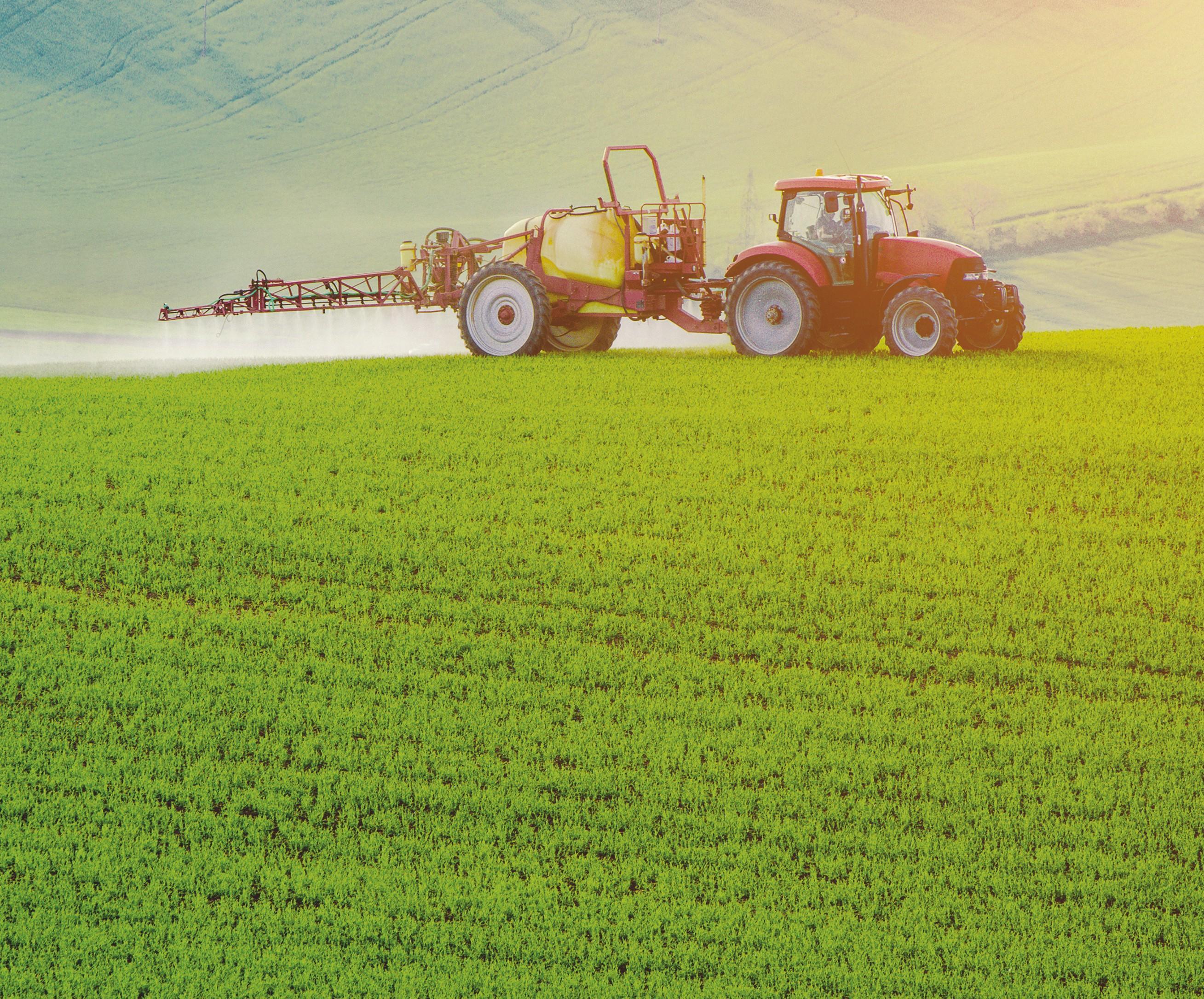 Épendage de pesticides sur un champ de colza.