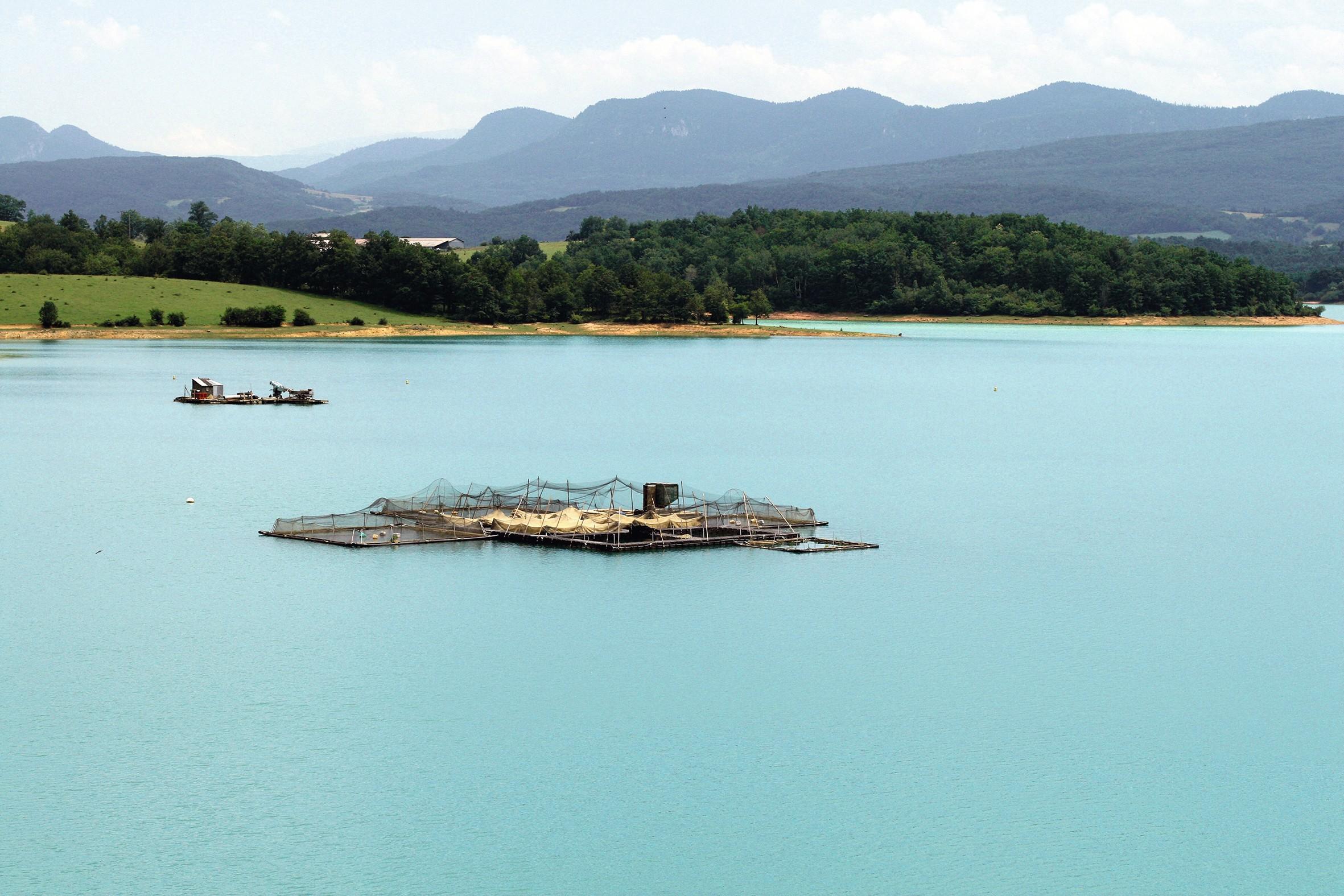 Aquaculture extensive sur le lac de Montbel (Pyrénées, France).