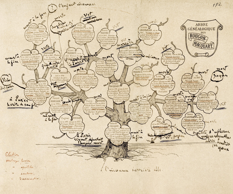 Émile Zola, L'Arbre généalogique des Rougon-Macquart annoté, dans le dossier préparatoire au roman Le Docteur Pascal, 1892, 38 × 60 cm, BnF, Paris.