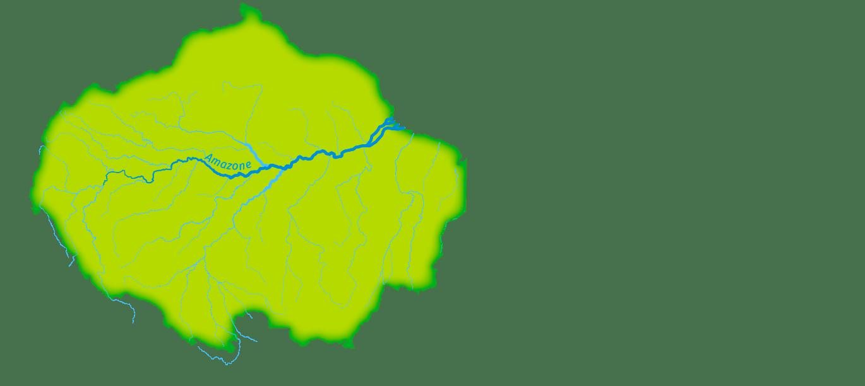 L'emprise spatiale de la forêt et de son fleuve