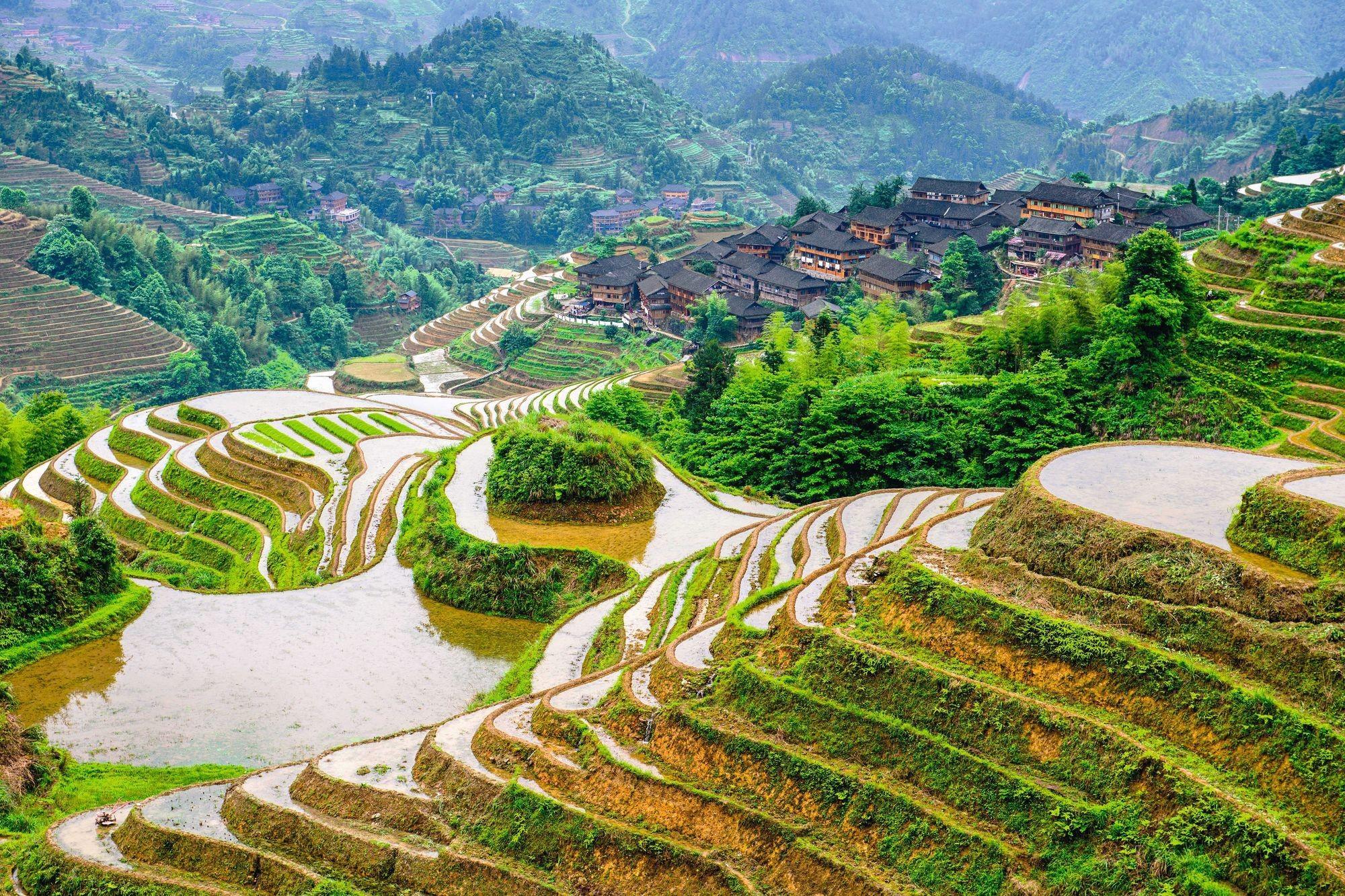Des aménagements spécifiques liés à l'eau : les terrasses de Yuanyuang en Chine