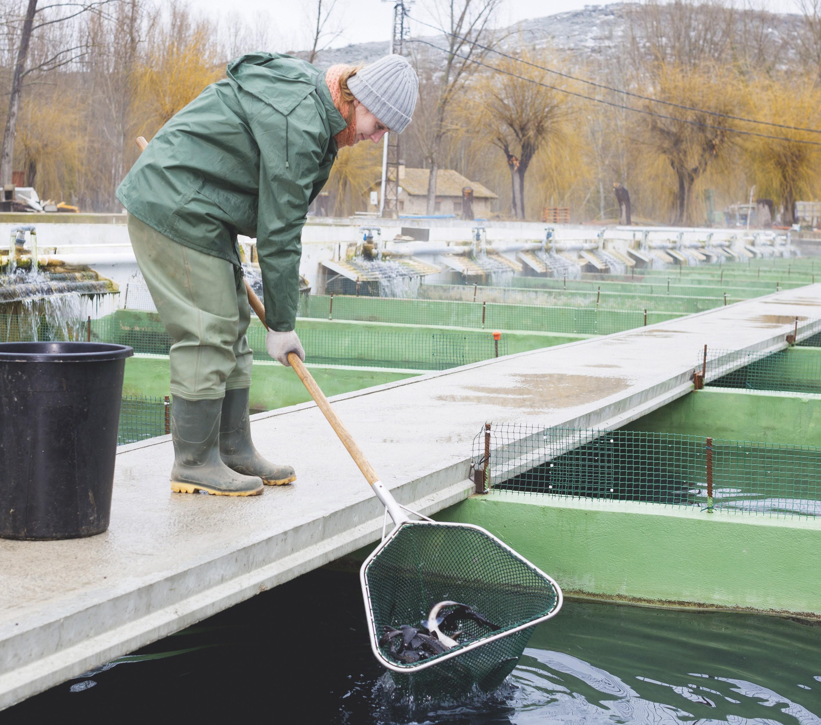 Aquaculteur(trice) : la culture de la mer