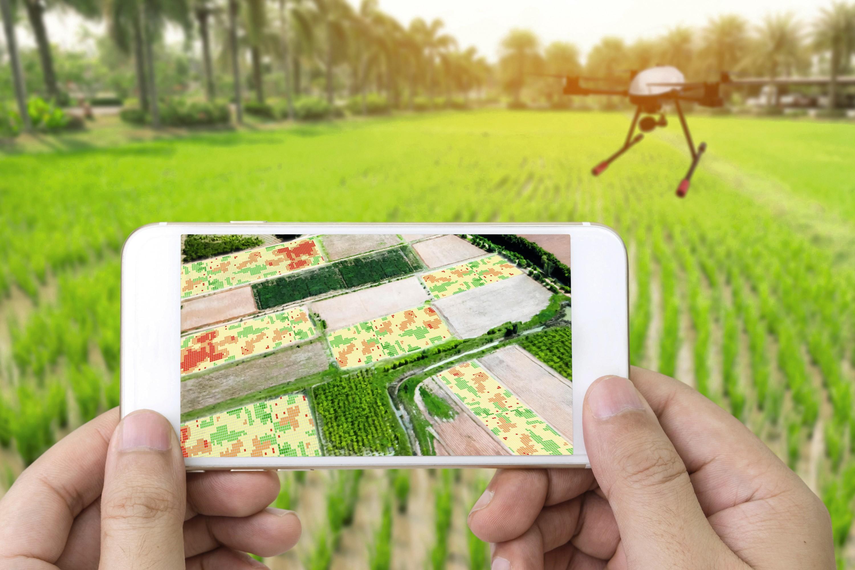 Des drones pour l'agriculture.