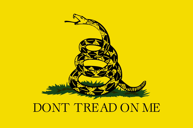 drapeau Benjamin Franklin