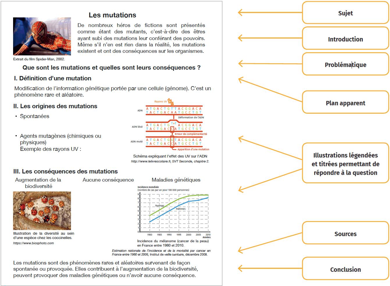 Un exemple de support pour une présentation orale : le poster