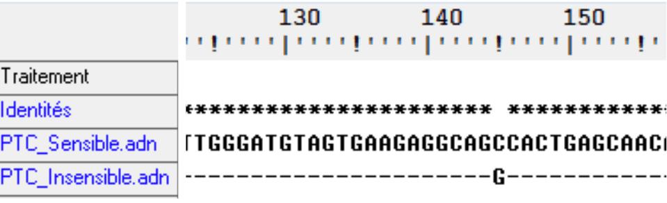 Comparaison de séquences des formes de TAS2R38